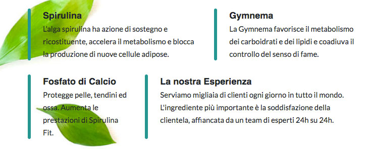 spirulina fit ingredienti