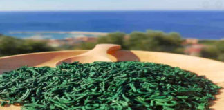 alga spirulina per dimagrire